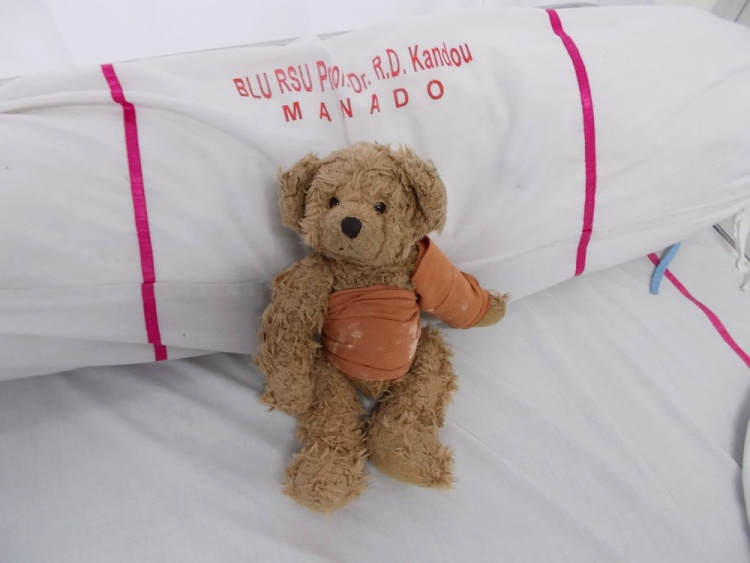 Teddy Land: 14 July 2012