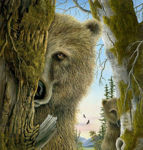 Teddy Land: Rangers by Robert Bissell