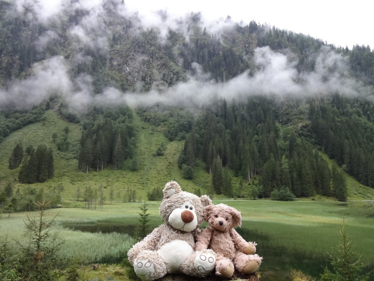 Teddy Land: Schladminger Tauern