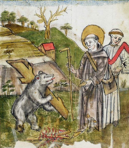 Teddy Land: St. Gall and the Bear