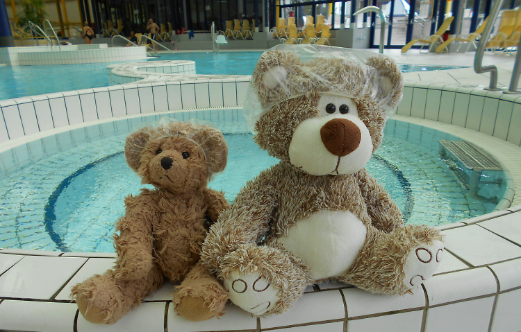 Teddy Land: Teddy Little Bear and Dzibelia learning to swim