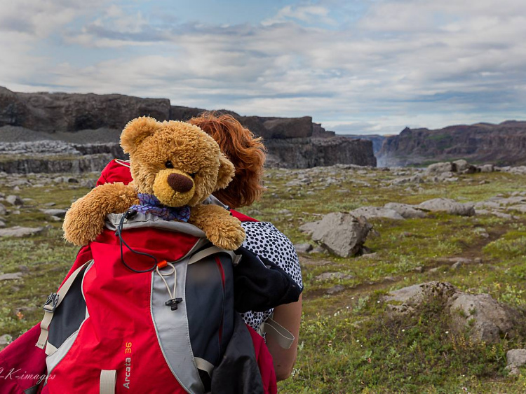 Teddy Land: Christian Kneidinger and his wife Ranati travel with their Teddy in the backpack
