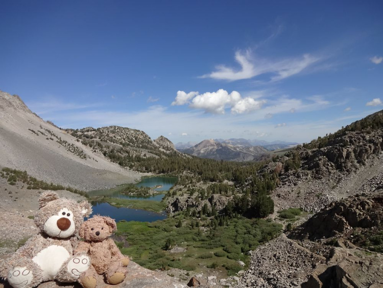 Teddy Land: John Muir Wilderness