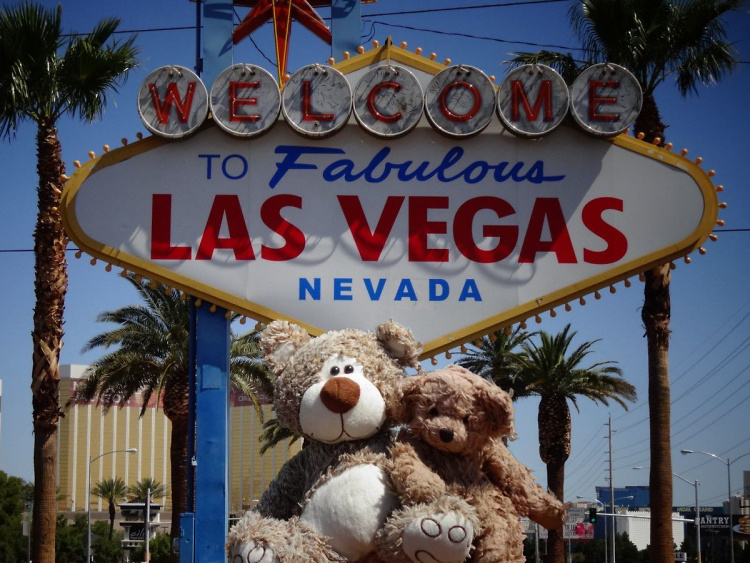 Teddy Land: Welcome to Fabulous Las Vegas, Nevada!