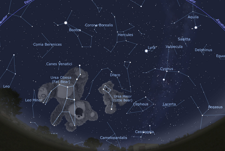 Teddy Land: Fat Bear and Little Bear constellations