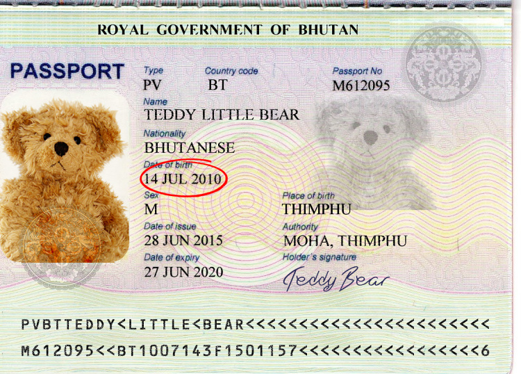 Teddy Land: Teddy Little Bear passport