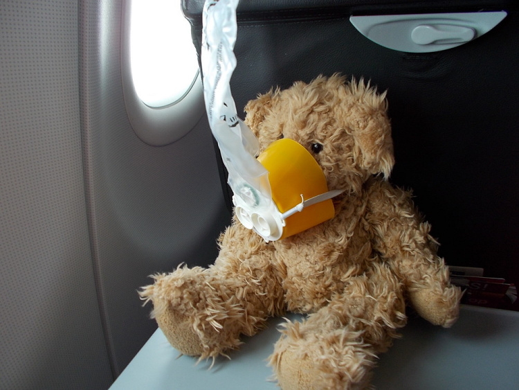 Teddy Land: flying AirAsia