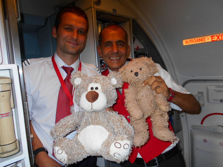 Teddy Land: Flying Austrian