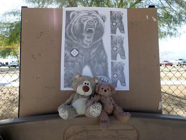 Teddy Land: Clark County Shooting Complex
