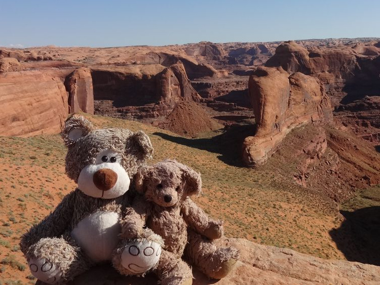 Teddy Land: Coyote Gulch