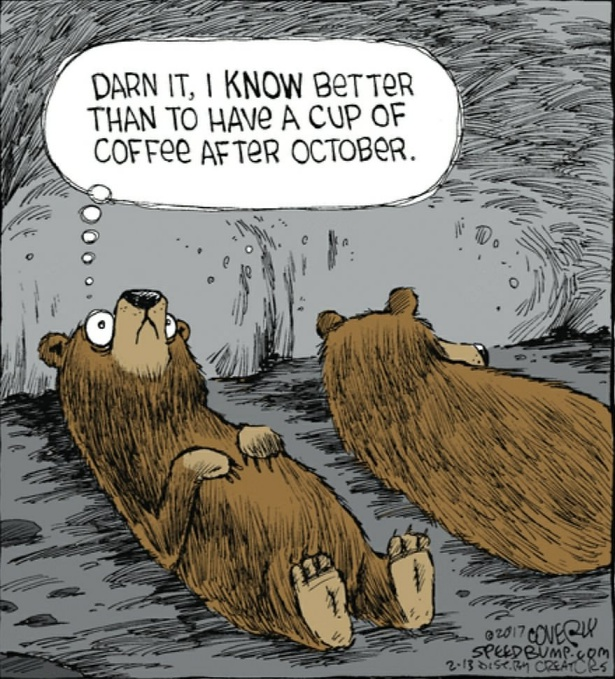Teddy Land: Coffee after October