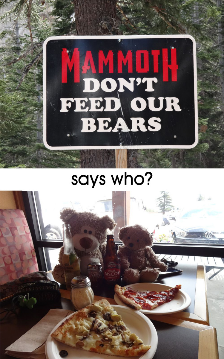 Teddy Land: Don't Feed Our Bears
