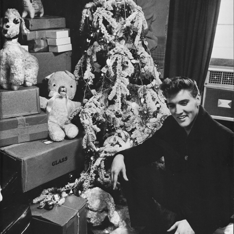 Teddy Land: Elvis Presley - Merry Christmas Baby