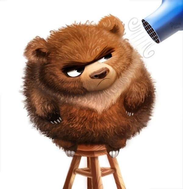 Teddy Land: Frizzly Bear by Piper Thibodeau
