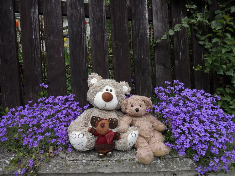 Teddy Land: Spring is here!