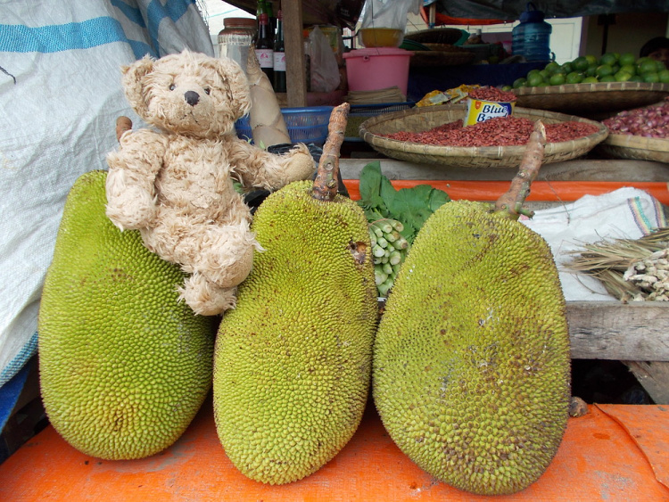 Teddy Land: Fruit market in Kotamobagu