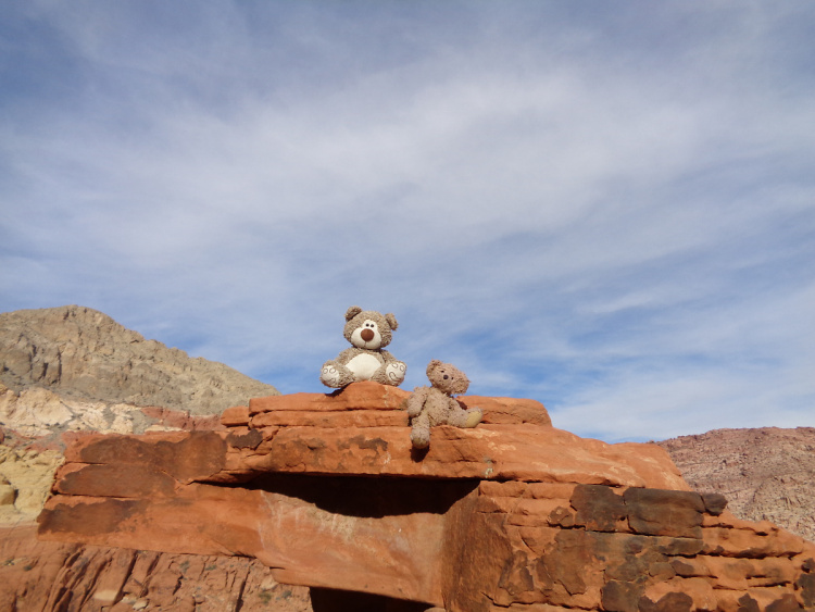 Teddy Land: Red Rock Canyon