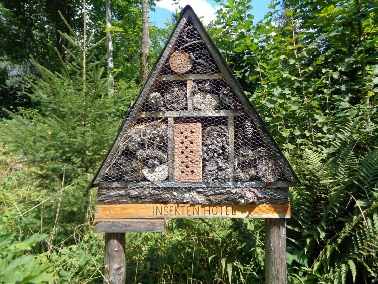 Teddy land: Insect hotel