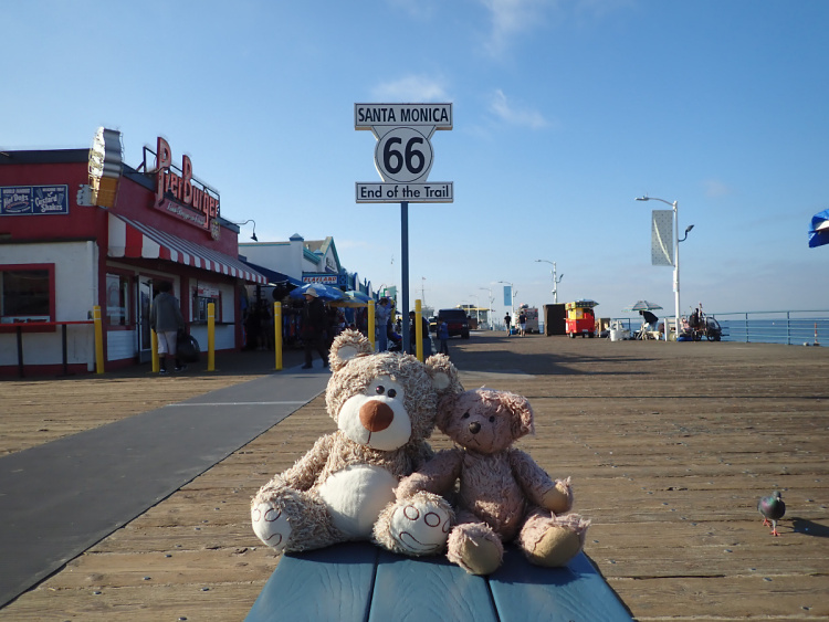 Teddy Land: Venice Beach