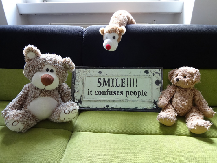 Teddy Land: Smile - It confuses people