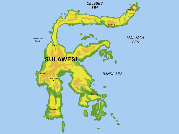 Teddy Land: Sulawesi map