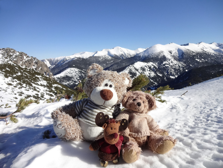 Teddy Land: Beautiful day in Rila Mountain, Mechit