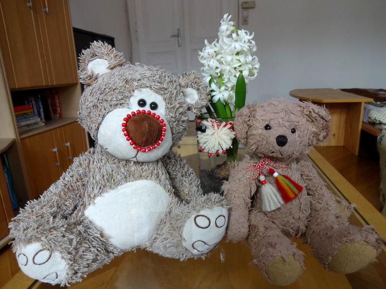 Teddy Land: Happy 1st of March