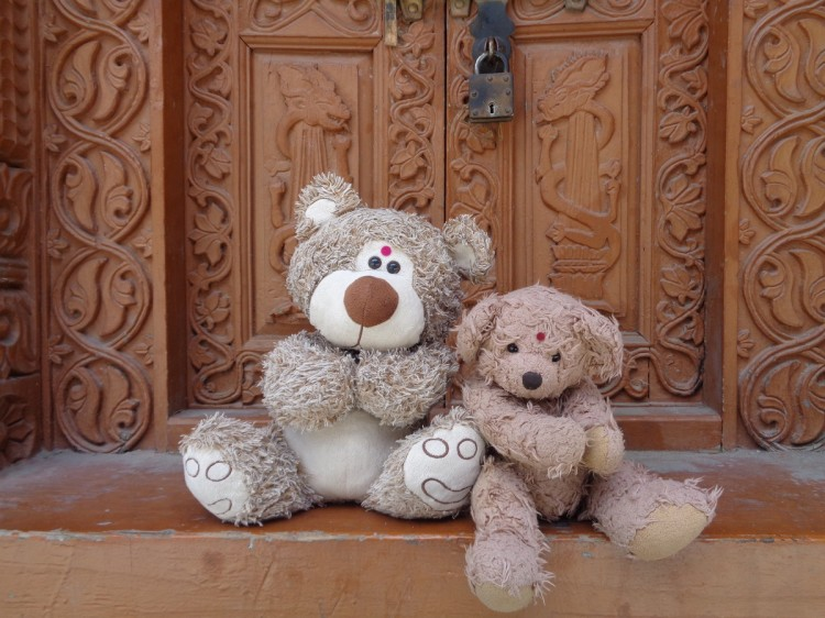 Teddy Land: Namaskar from Kalpa, Himachal Pradesh