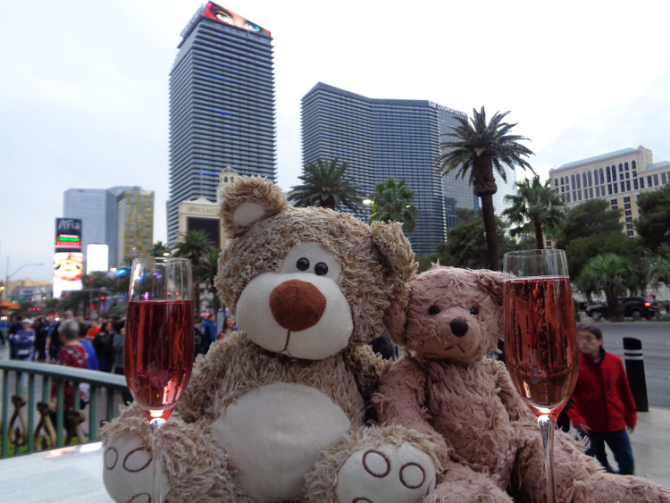Teddy Land: Bears Night Out