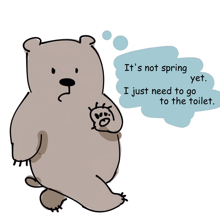 Teddy Land: It's not spring yet