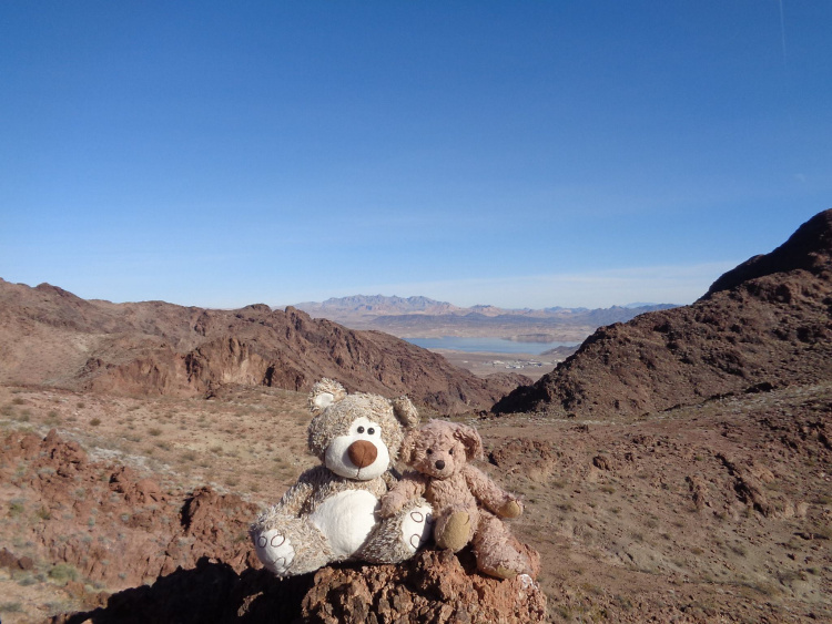 Teddy land: Sheepbone and Quarry Canyons Loop