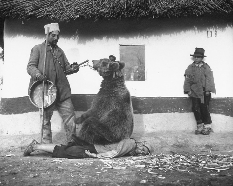Teddy Land: Spine treatment, Romania, 1946