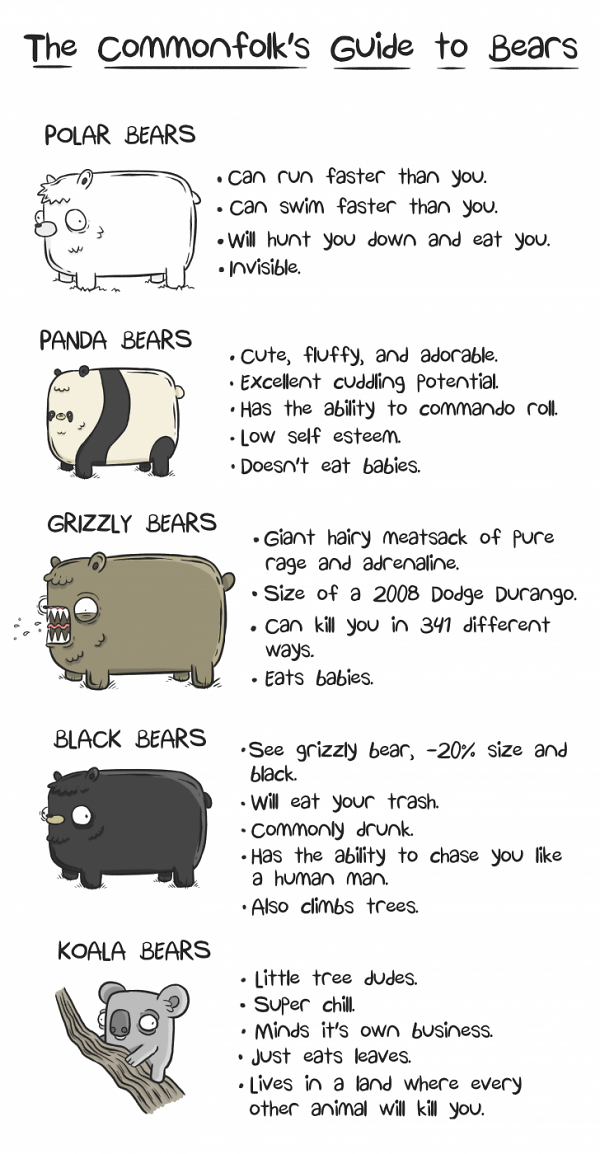 Teddy Land: The commonfolk's guide to bears