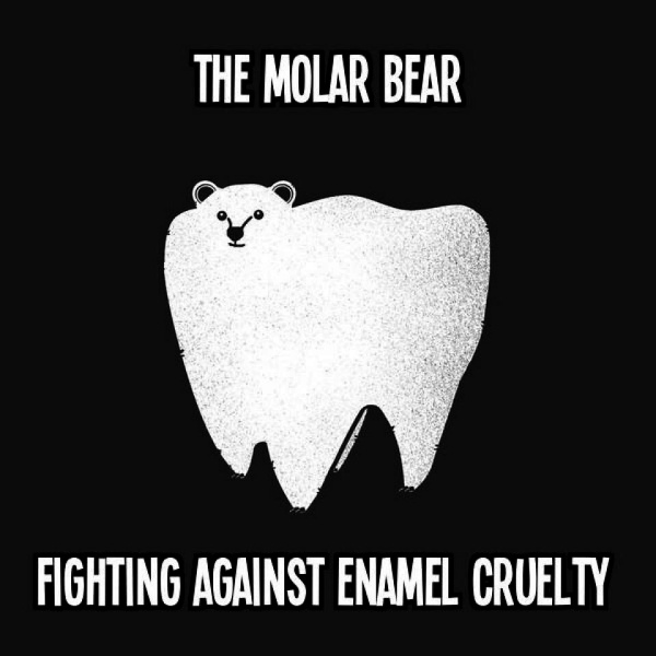 Teddy Land: The Molar Bear - Fighting Against Enamel Cruelty