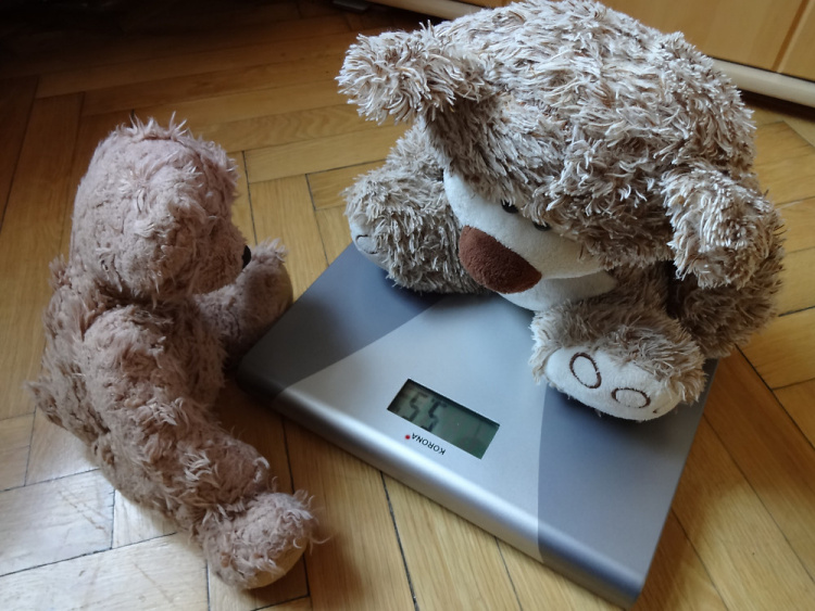 Teddy Land: Weight Watchers