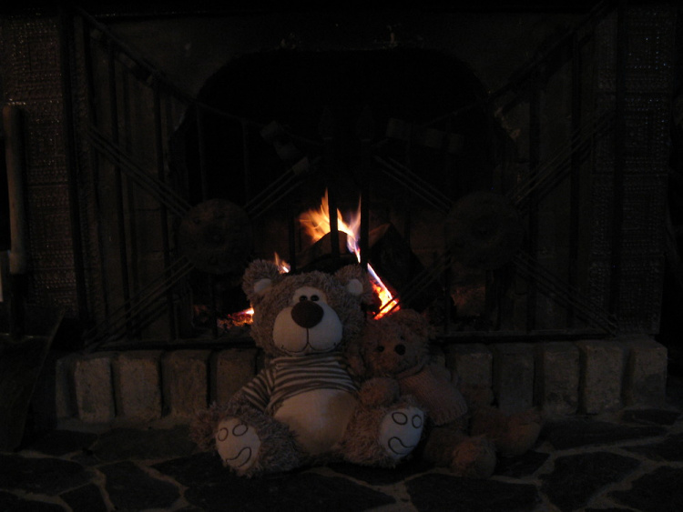 Teddy Land: In front of the fireplace
