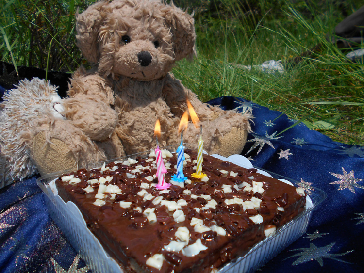 Teddy Land: Happy Birthday 3
