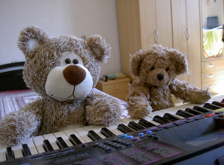 Teddy Land: Piano concerto for four paws