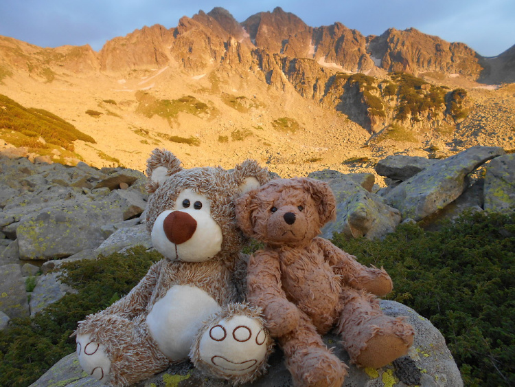 Teddy Land: Pirin Mountain, Bulgaria