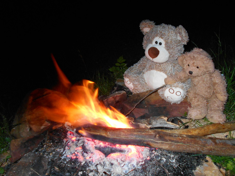 Teddy land: camp fire at Smilyo shelter, Vitosha mountain, Bulgaria
