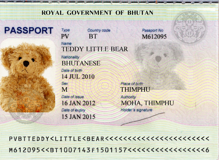 Teddy Little Bear: you need a passport to travel