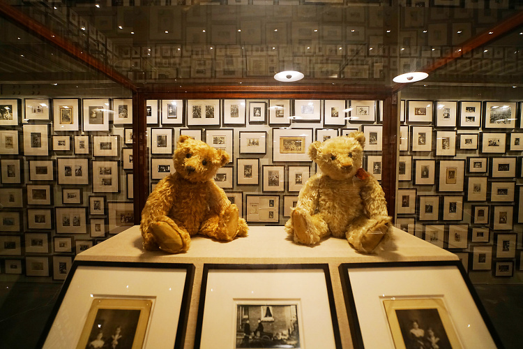Teddy Land: The Teddy Bear Project