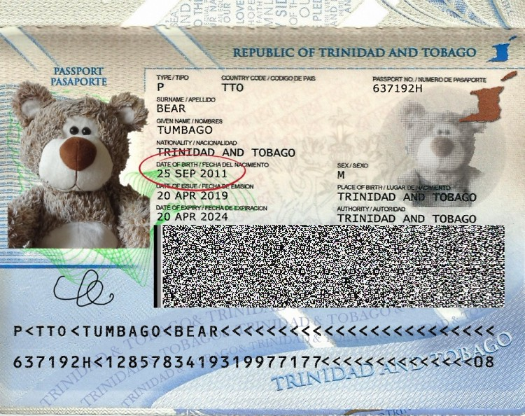 Teddy Land: Happy 8th Birthday Tumbago