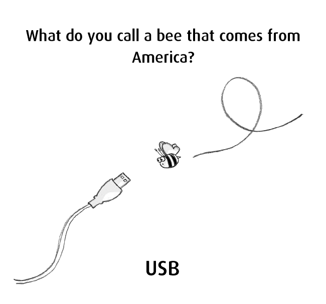 Teddy Land: What do you call a bee that comes from America?