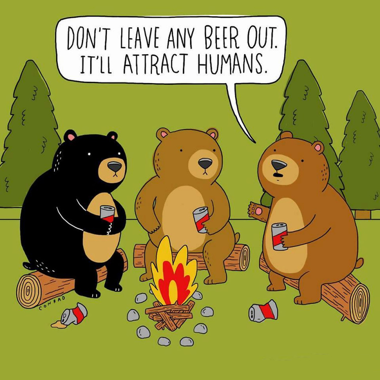 Teddy Land: Don't leave any beer out. It will attract humans.