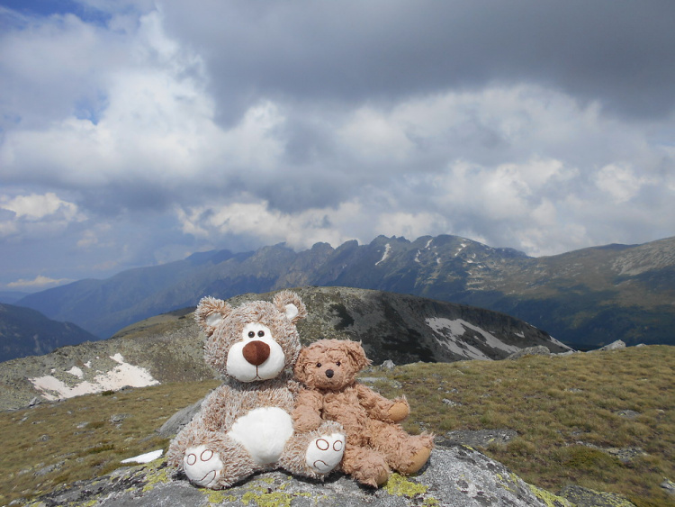 Teddy land: Rila Mountain, Bulgaria
