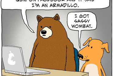 - I took 'What animal are you?' quiz on Facebook and it said I'm an armadillo. - I got sassy wombat.