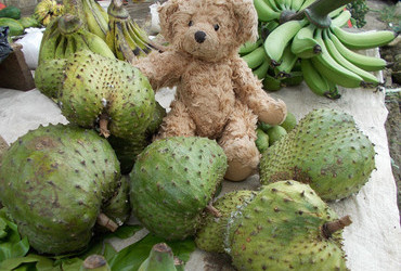 ♥ Soursop - market in Kotamobagu