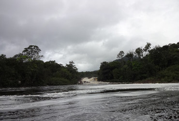 Potaro River in Kaieteur National Park - Guyana