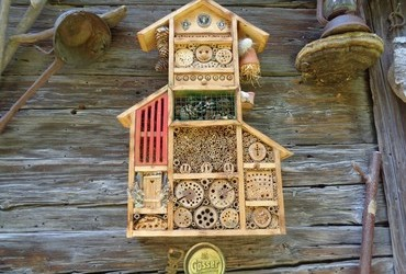 Insect hotel. This one seems to have WC